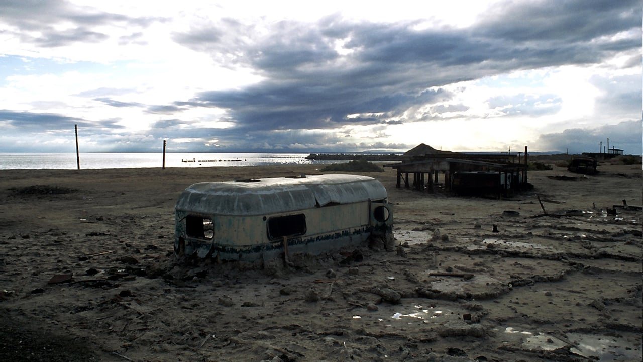 Plagues & Pleasures On The Salton Sea