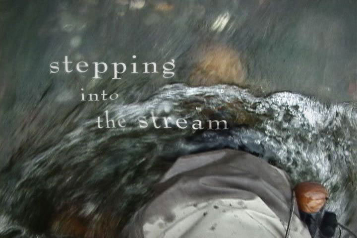 Stepping into the Stream